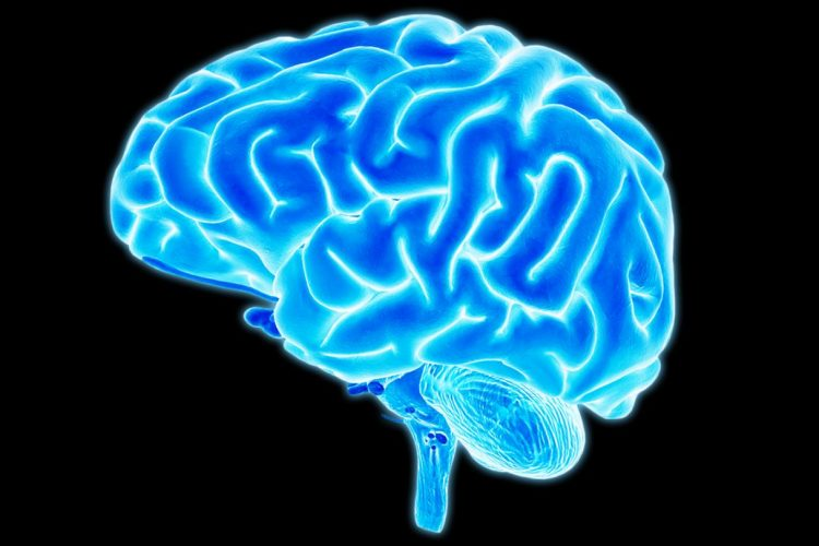 How your brain changes when you run